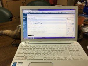 作業中のパソコン